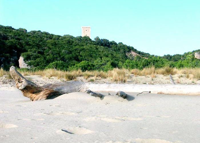 spiaggia_torre_collelungo